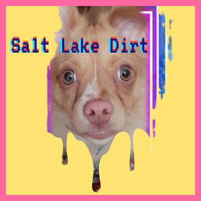 salt-lake-dirt
